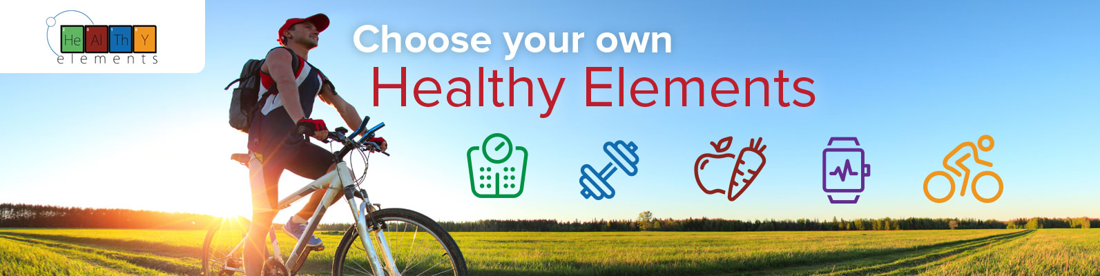 Choose your own Healthy Elements